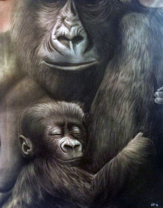 012416 Gorillas
